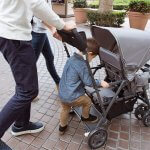 The Best Sit And Stand Stroller
