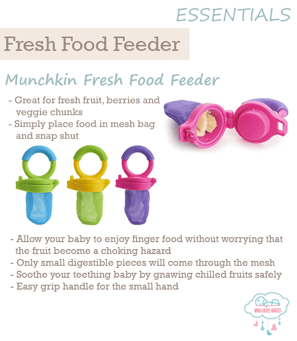 Feeding Must-Haves Fresh Fruit Feeder