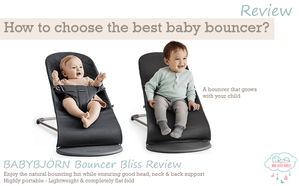 baby bjorn bouncer seat cover velcromag. Black Bedroom Furniture Sets. Home Design Ideas